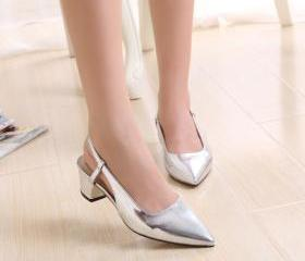 Pointed Toe Silver M..